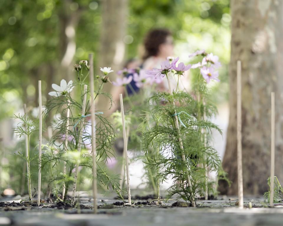 Image - Team: Service des parcs et domaines sur une idée de Marianne Benech Heiniger, Etienne Elsner et Roland Schmidt - Photo: Matthieu Gafsou